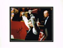 Dennis Taylor Autograph Signed Photo - Snooker